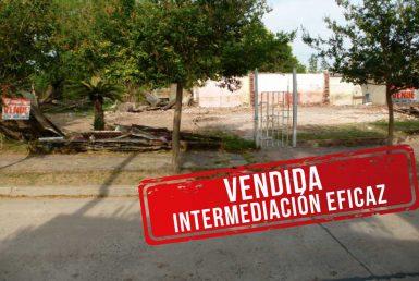 Catamarca-entre-Pedro-P.-Ceci-y-Cordoba_VENDIDA