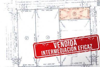 CAMPO-PIAGGIO 10 Hectareas-Agricolas VENDIDA