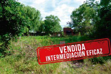 COMI-PINI DOS-TERRENOS-BALDIO_-VENDIDO